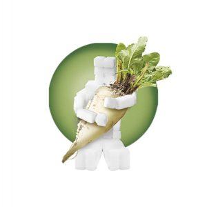 Tman-holding-beet-sugar.jpg